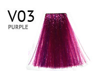 V03-PURPLE